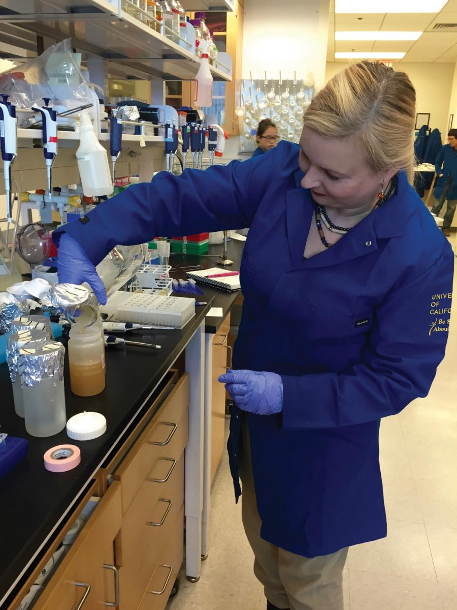 Anna Dumitriu working in the lab at the Center for Complex Biological Systems at UCI.